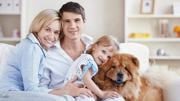 Wills & Trusts dog-young-family Direct Wills Goadby